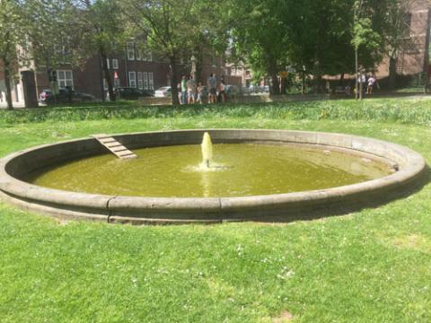 Fontein Park Sint-Truiden spuit groen water