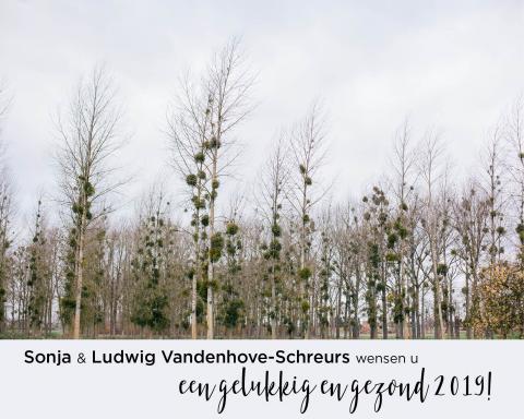 nieuwjaarskaart van ludwig en sonja 20189
