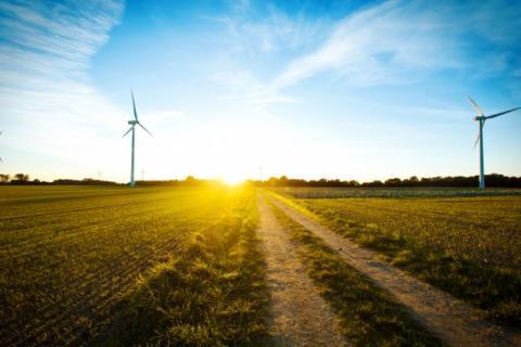 Windmolen in een veld bij zonsondergang